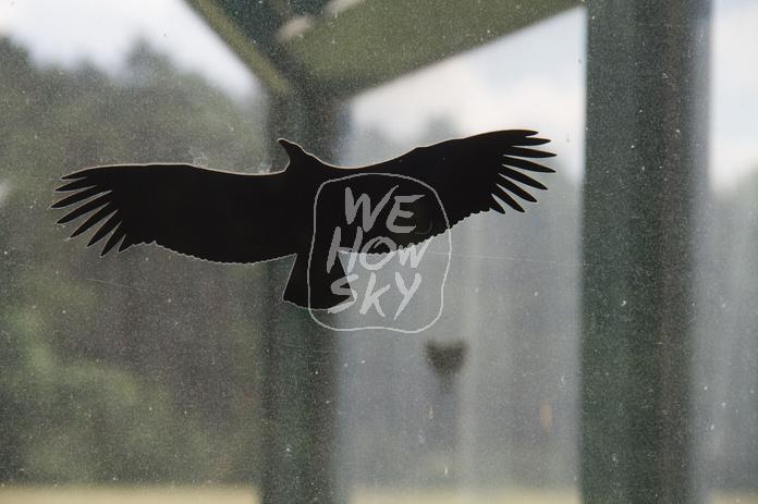 Warnvogelaufkleber