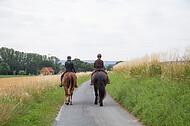 Reiter auf Feldweg