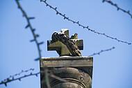 Kreuz auf Säule