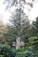 Steinkreuz vor Birke