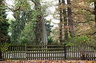 Friedhofszaun