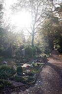 Friedhofszene im Gegenlicht