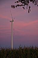 Windkraft im Sonnenuntergeng