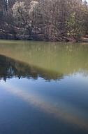 Schatten auf Teich