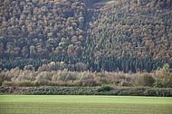 Bewaldeter Bergrücken