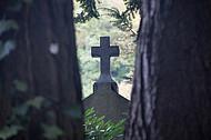 Kreuz zwischen Baumstämmen