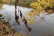 Herbstfluß