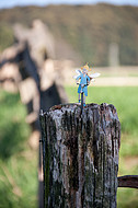 Blechfigur auf Weidezaun