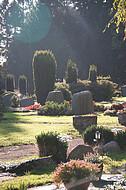 Gräber im Gegenlicht