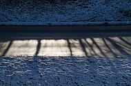 Fahrbahn im Gegenlicht