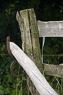 Weidezaun auz Holz